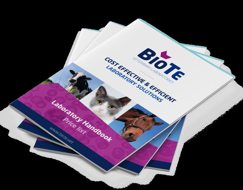 BioTe brochure