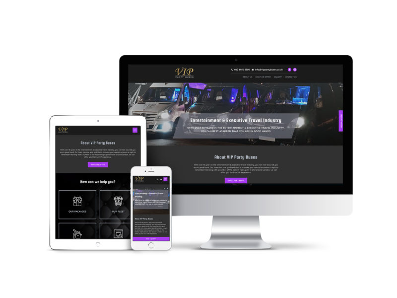 VIP party buses website design