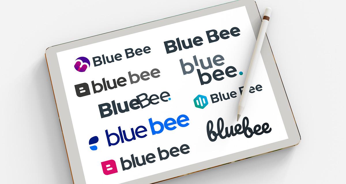 blue bee branding concepts