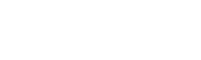 Wessex Fleet light logo